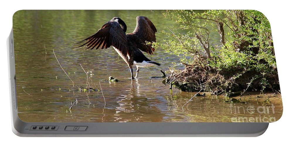 Wildlife Portable Battery Charger featuring the photograph Gaze Into The Sunset by Yvette Winder