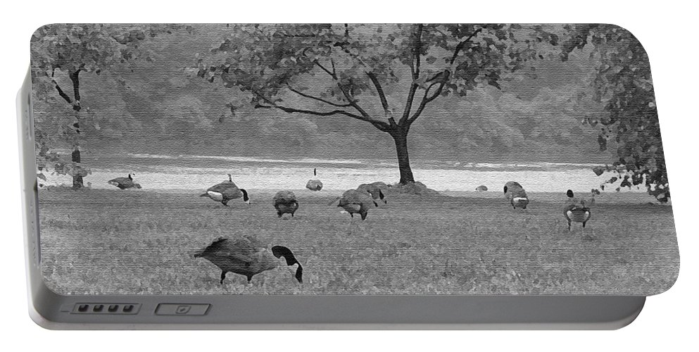 Philadelphia Portable Battery Charger featuring the photograph Geese On A Rainy Day by Bill Cannon