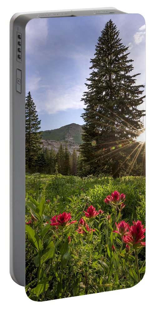 Gem Portable Battery Charger featuring the photograph Gem by Chad Dutson