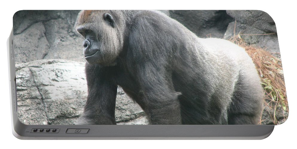 Gorilla Portable Battery Charger featuring the photograph Gentle Giant by Stacey May