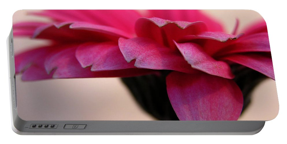 Pink Flower Portable Battery Charger featuring the photograph Gerbera Daisy by Carol Milisen