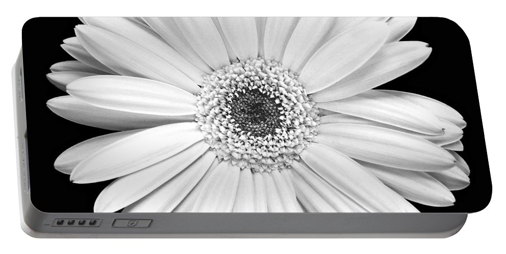 Gerber Portable Battery Charger featuring the photograph Single Gerbera Daisy by Marilyn Hunt