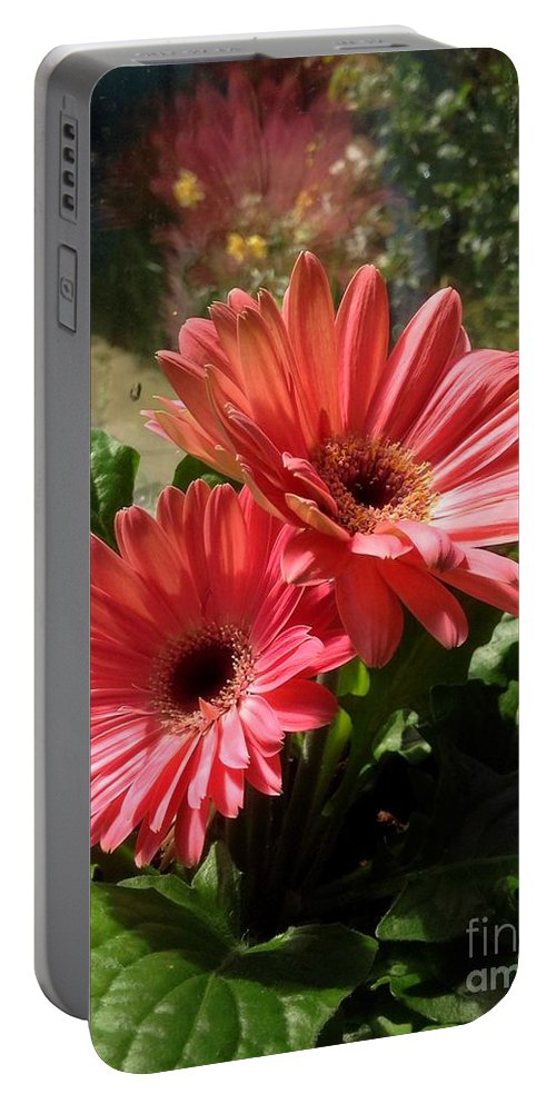 Gerbera Flowers Portable Battery Charger featuring the photograph Gerberas In Coral Pink 2 by Joan-Violet Stretch