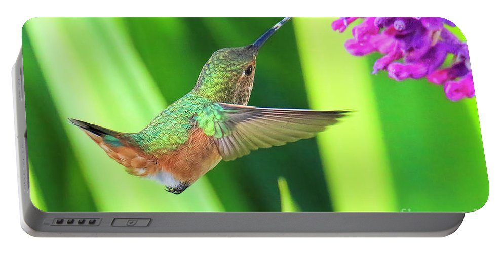Hummingbird Portable Battery Charger featuring the photograph Getting There by Edita De Lima