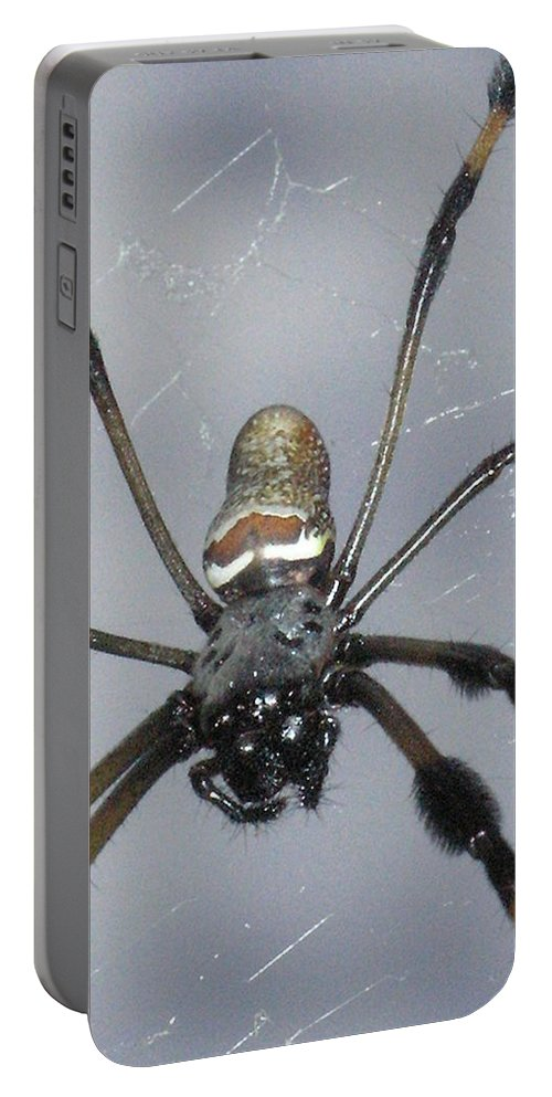 Nature Portable Battery Charger featuring the photograph Getting To Know A Golden Orb Weaver by Kimberly Mohlenhoff