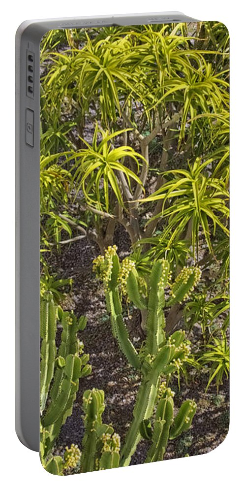 California Portable Battery Charger featuring the photograph Getty Garden #10 by David Thompson