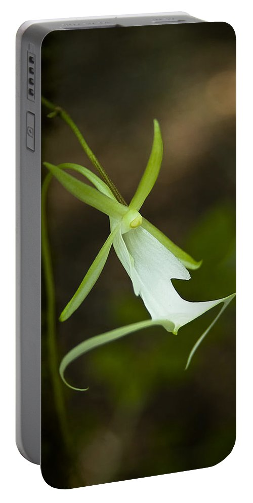 Ghost Portable Battery Charger featuring the photograph Ghost Orchid by Rich Leighton