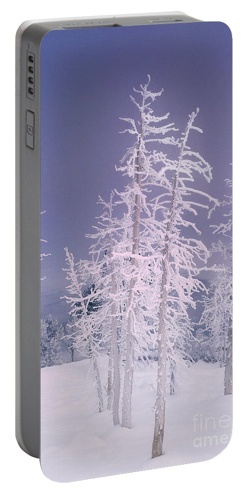 North America Portable Battery Charger featuring the photograph Ghost Trees Yellowstone National Park by Dave Welling