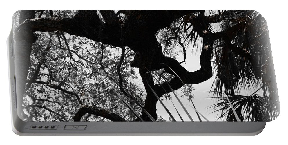 Shannon Portable Battery Charger featuring the photograph Ghostly Limbs by Shannon Sears