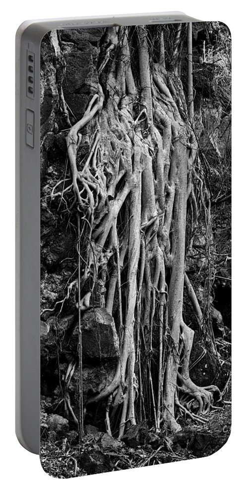 Hawaii Portable Battery Charger featuring the photograph Ghostly Roots - Bw by Christopher Holmes