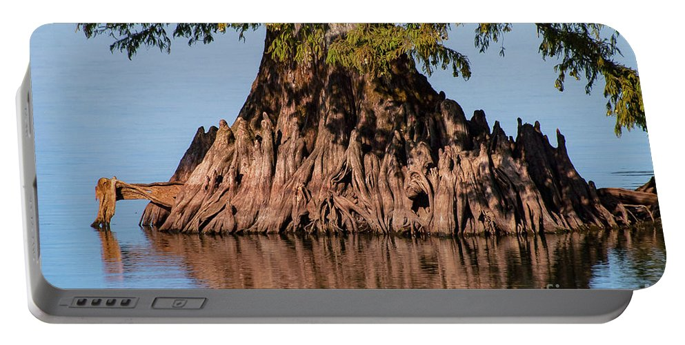 Reelfoot Lake State Park Portable Battery Charger featuring the photograph Giant Cypress Tree In Reelfoot Lake by Bob Phillips
