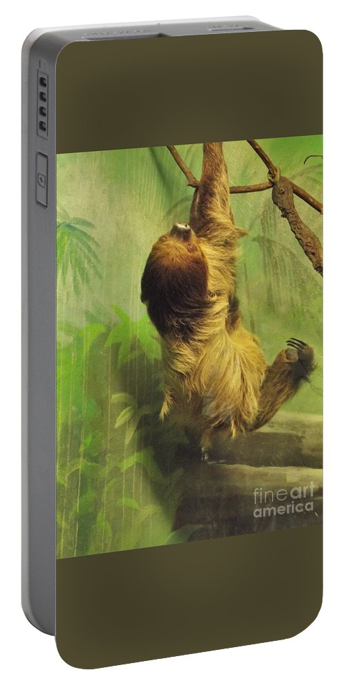 Sloth Portable Battery Charger featuring the photograph Giant Sloth   June     Indiana by Rory Cubel