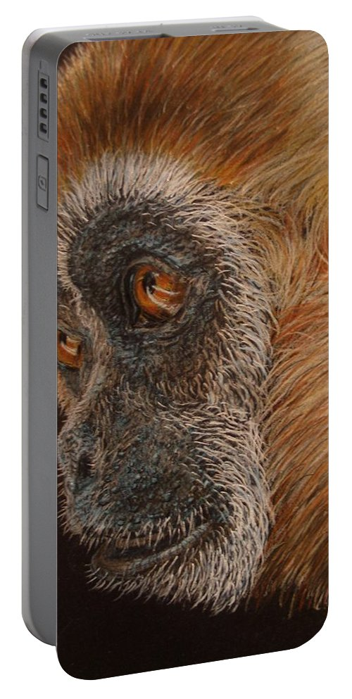 Animals Portable Battery Charger featuring the drawing Gibbon by Karen Ilari