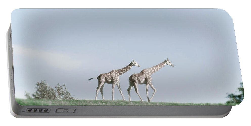 Giraffe Portable Battery Charger featuring the photograph Giraffe Pair On Hill by Jim And Emily Bush