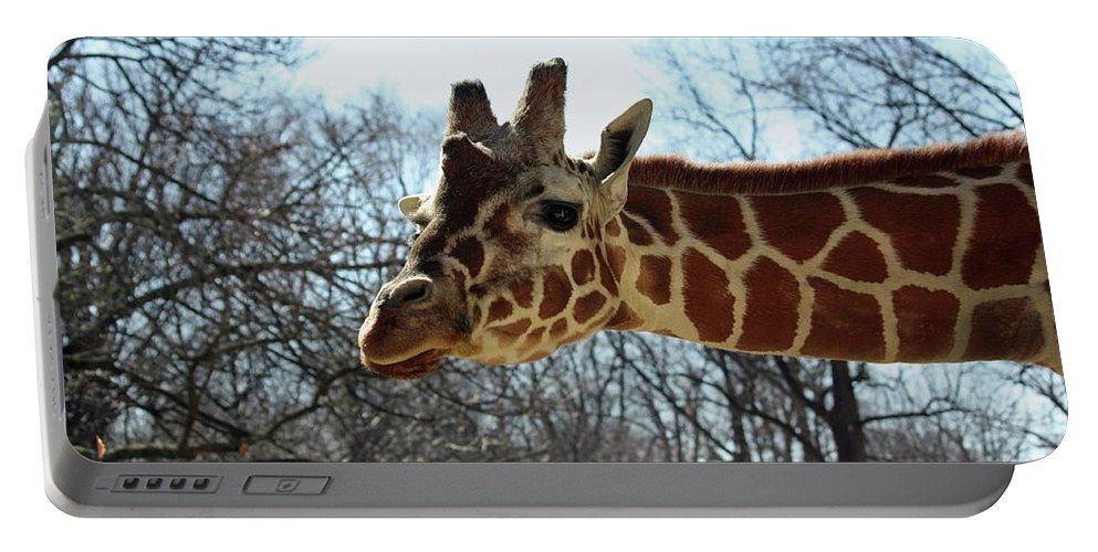 Maryland Portable Battery Charger featuring the photograph Giraffe Stretching For A View by Ronald Reid