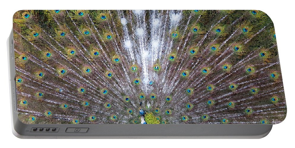 White Portable Battery Charger featuring the photograph Glassy Peacock by Laurel Powell
