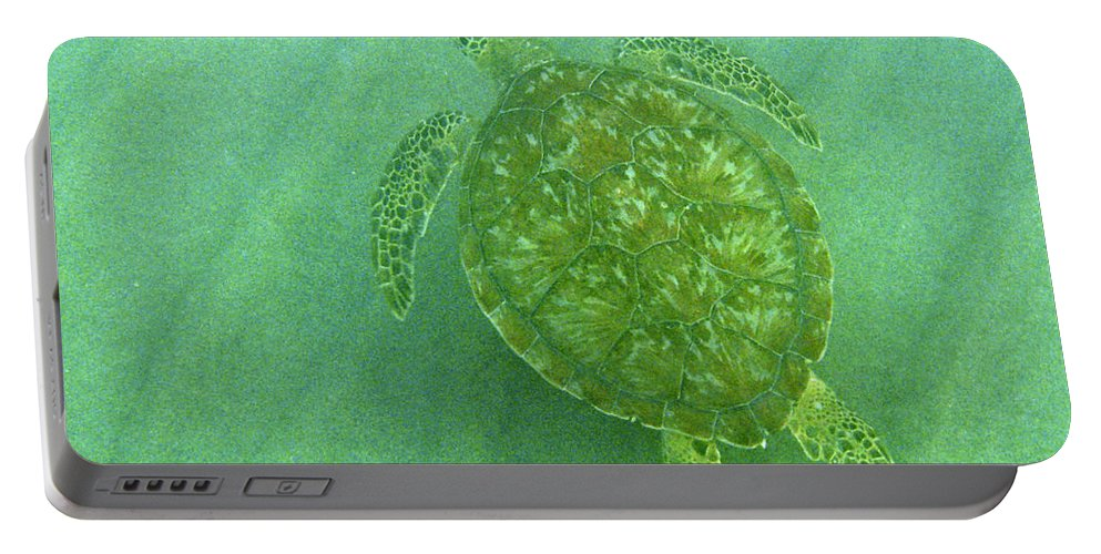 Nature Portable Battery Charger featuring the photograph Gliding Green by Kimberly Mohlenhoff