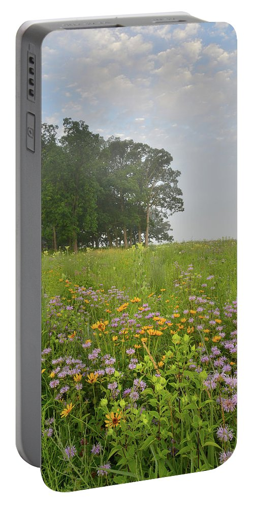 Black Eyed Susan Portable Battery Charger featuring the photograph Glorious Morning At Glacial Park by Ray Mathis