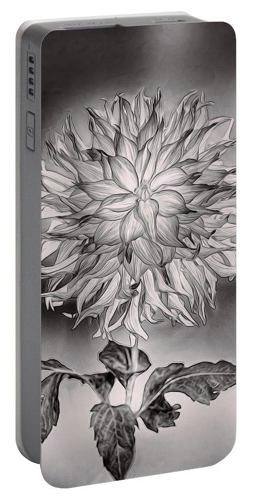 Dahlia Portable Battery Charger featuring the photograph Glowing Dahlia by Claude LeTien