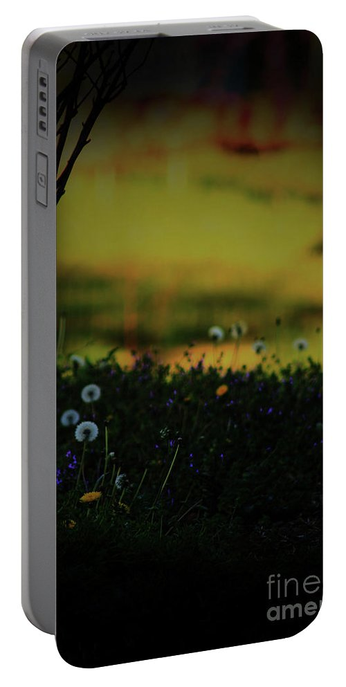 Nature Portable Battery Charger featuring the photograph Glowing by Kim Henderson