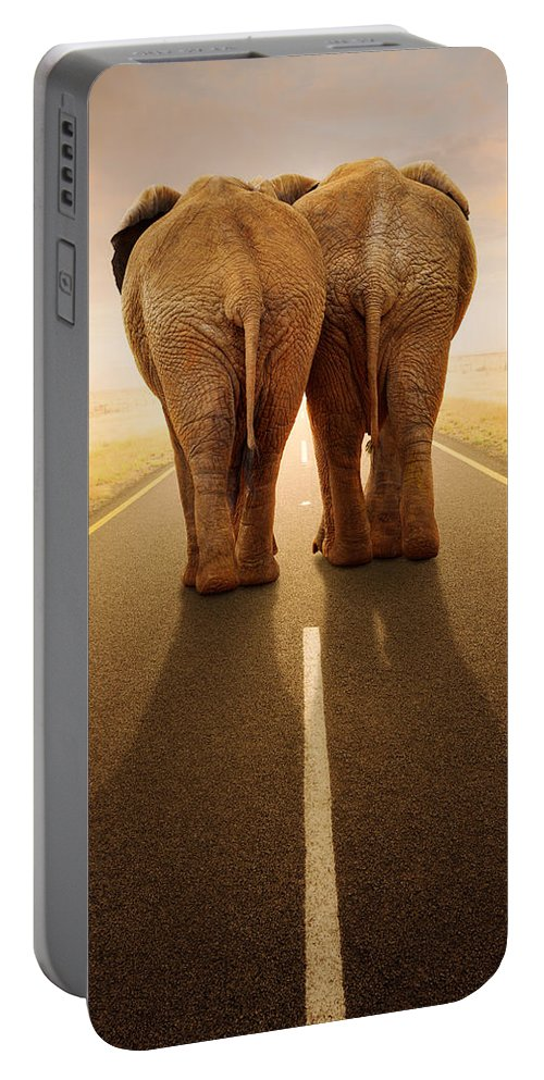 Elephant Portable Battery Charger featuring the photograph Going Away Together / Travelling By Road by Johan Swanepoel