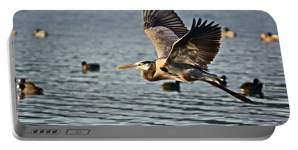 Birds Portable Battery Charger featuring the photograph Going Up by Diana Hatcher