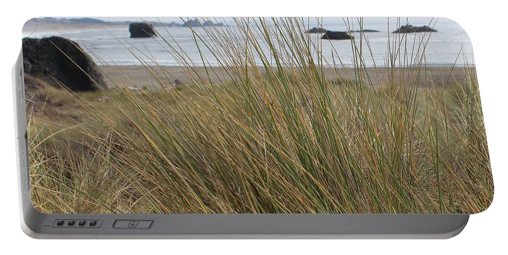 Driftwood Portable Battery Charger featuring the photograph Gold Beach Oregon Beach Grass 10 by Lydia Miller