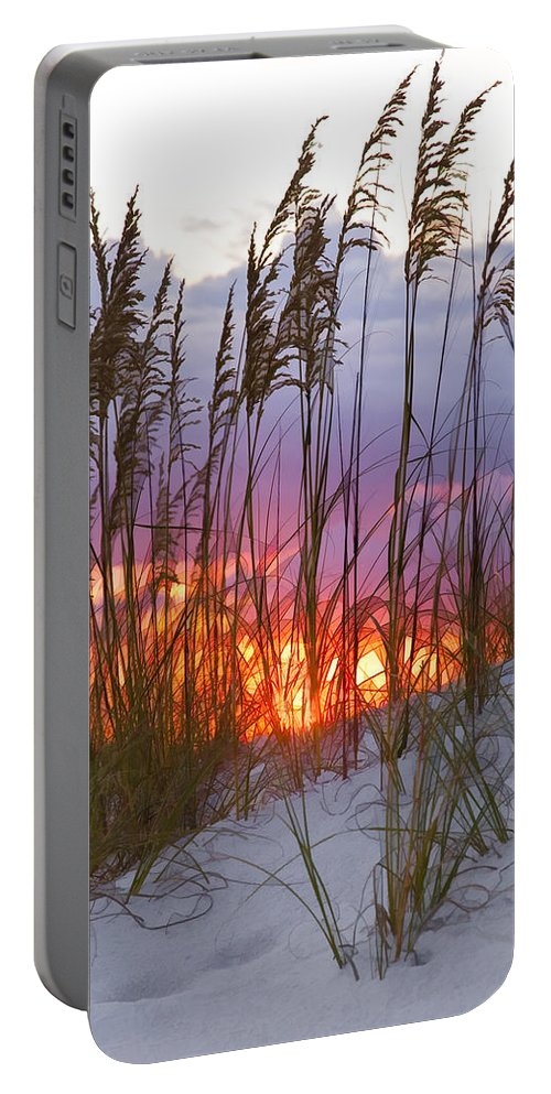 Sea Oats Portable Battery Charger featuring the photograph Golden Amber by Janet Fikar