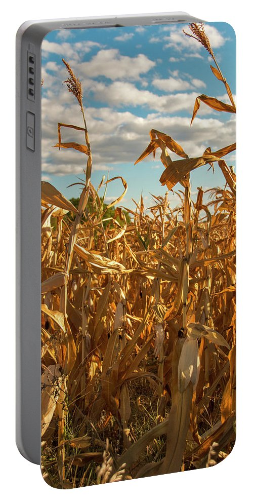 Golden Portable Battery Charger featuring the photograph Golden Crop by Brian Kenney