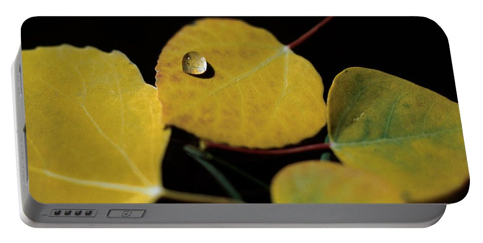 Aspen Portable Battery Charger featuring the photograph Golden Drop by Jerry McElroy