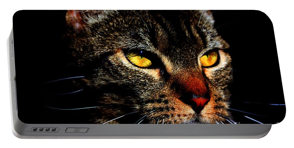 Cat Portable Battery Charger featuring the photograph Golden Eyes by Nick Gustafson
