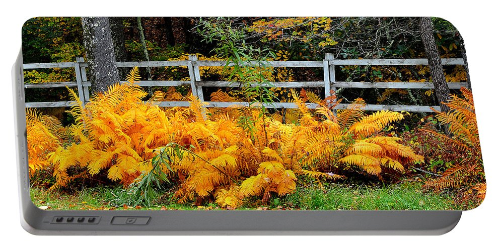Autumn Portable Battery Charger featuring the photograph Golden Fern by Todd Hostetter