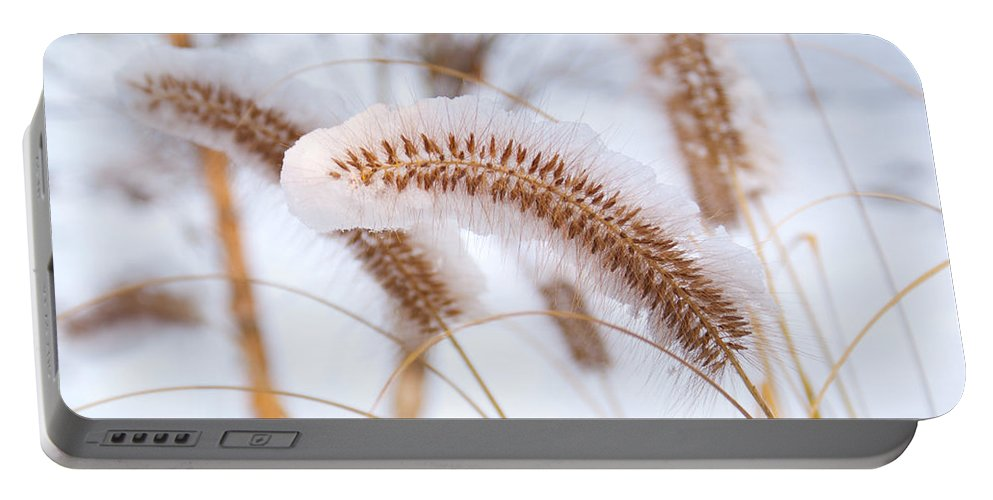 Foxtail Portable Battery Charger featuring the photograph Golden Foxtail by Douglas Barnett