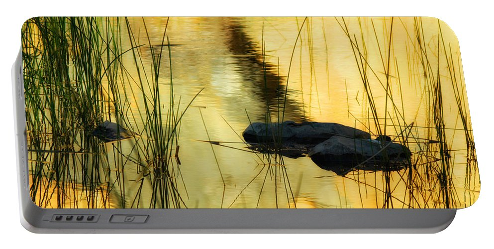 Water Portable Battery Charger featuring the photograph Golden Glow by Donna Blackhall