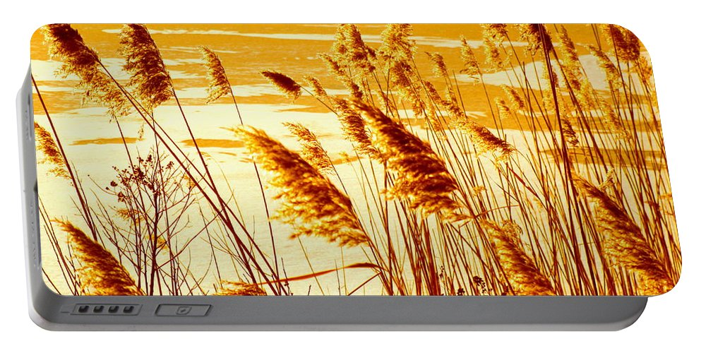 Water Portable Battery Charger featuring the photograph Golden Grasses by Sybil Staples