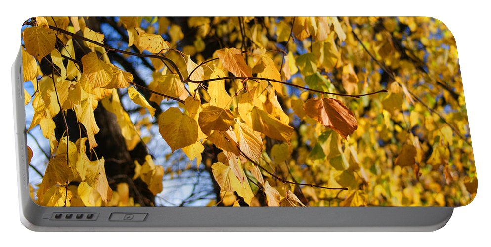 Autumn Portable Battery Charger featuring the photograph Golden Leaves by Carol Lynch