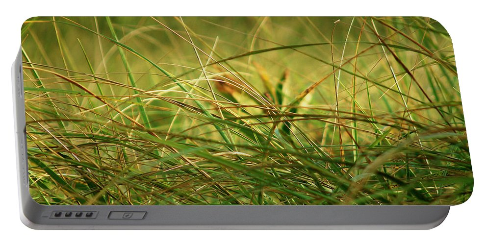 Autumn Portable Battery Charger featuring the photograph Golden Meadow September by RC DeWinter