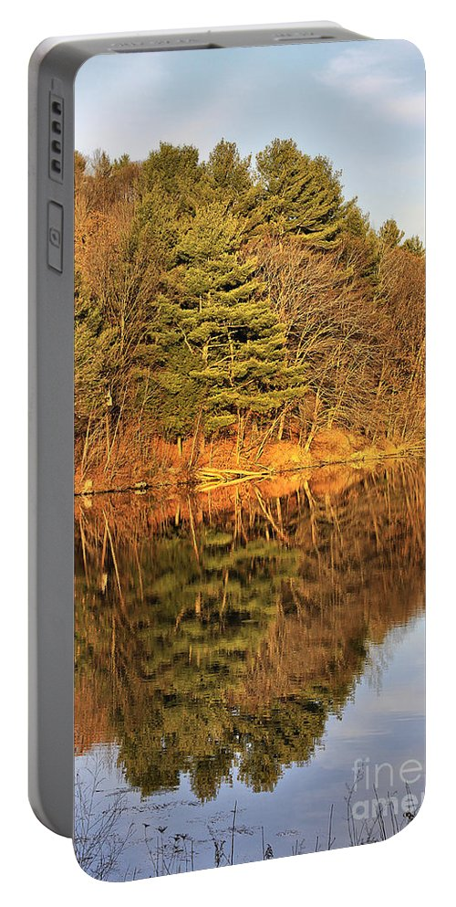 Light Portable Battery Charger featuring the photograph Golden Natural Light by Deborah Benoit