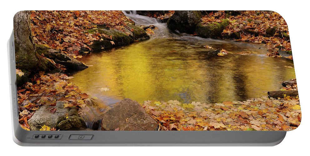 Gold Portable Battery Charger featuring the photograph Golden Reflections In A Stream On The Blanchet Trail Gatineau Pa by Reimar Gaertner