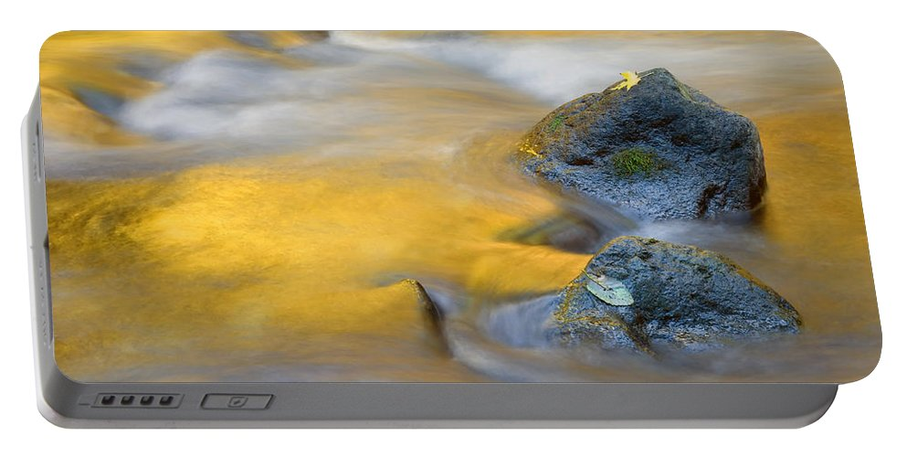 Leaves Portable Battery Charger featuring the photograph Golden Refuge by Mike Dawson