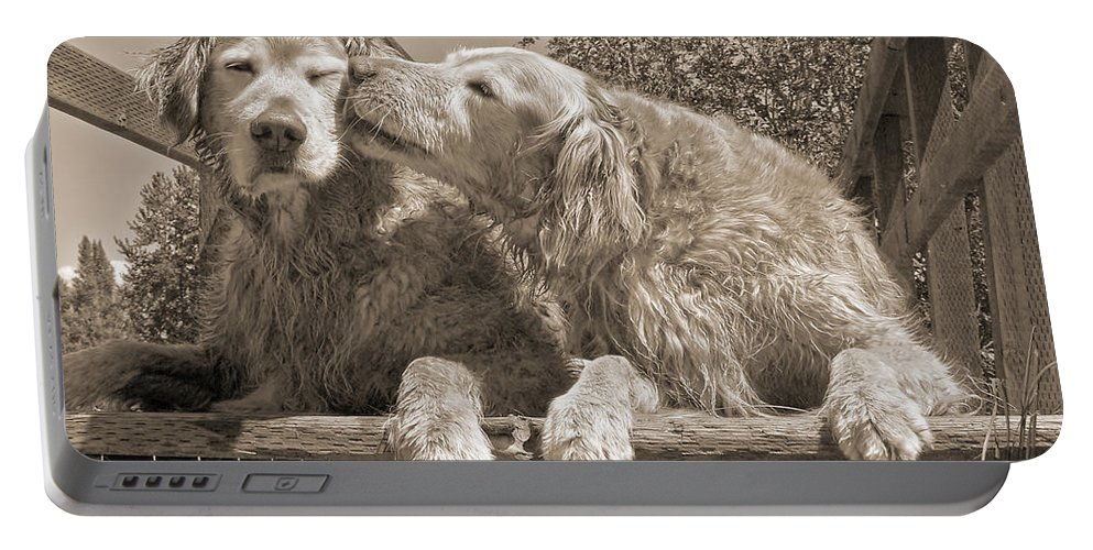 Golden Retriever Portable Battery Charger featuring the photograph Golden Retriever Dogs The Kiss Sepia by Jennie Marie Schell