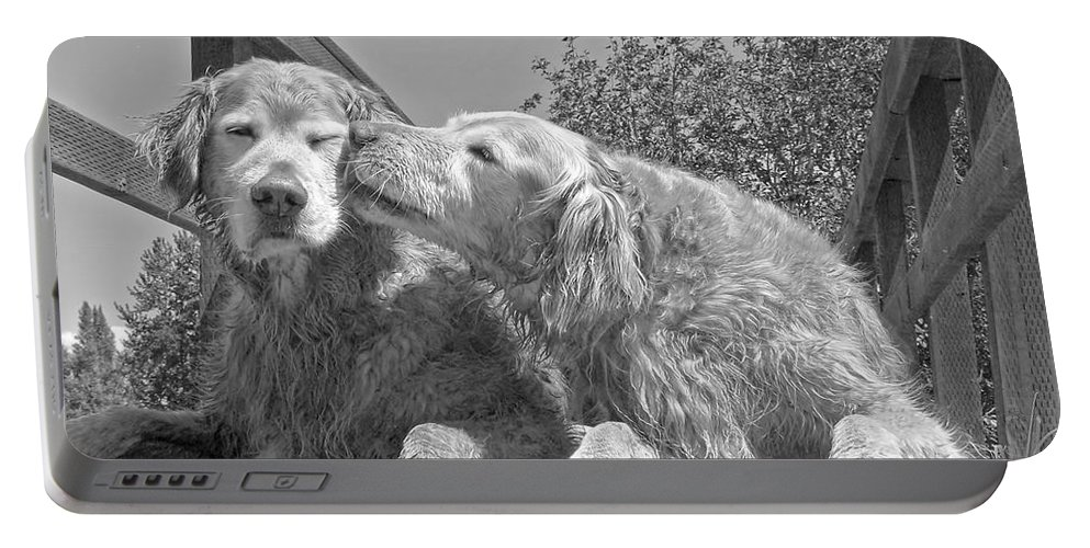 Golden Retriever Portable Battery Charger featuring the photograph Golden Retrievers The Kiss Black And White by Jennie Marie Schell
