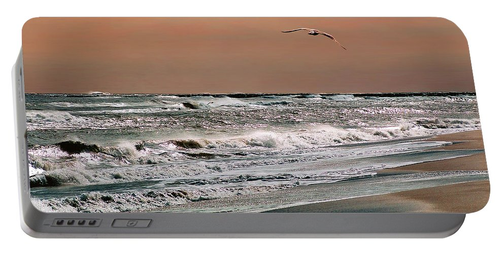 Seascape Portable Battery Charger featuring the photograph Golden Shore by Steve Karol