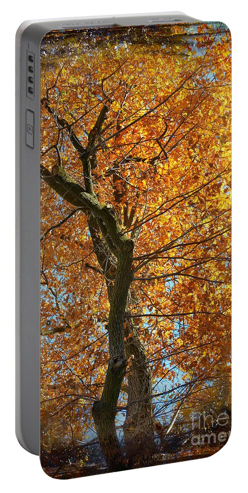 Tree Portable Battery Charger featuring the photograph Golden by Silvia Ganora