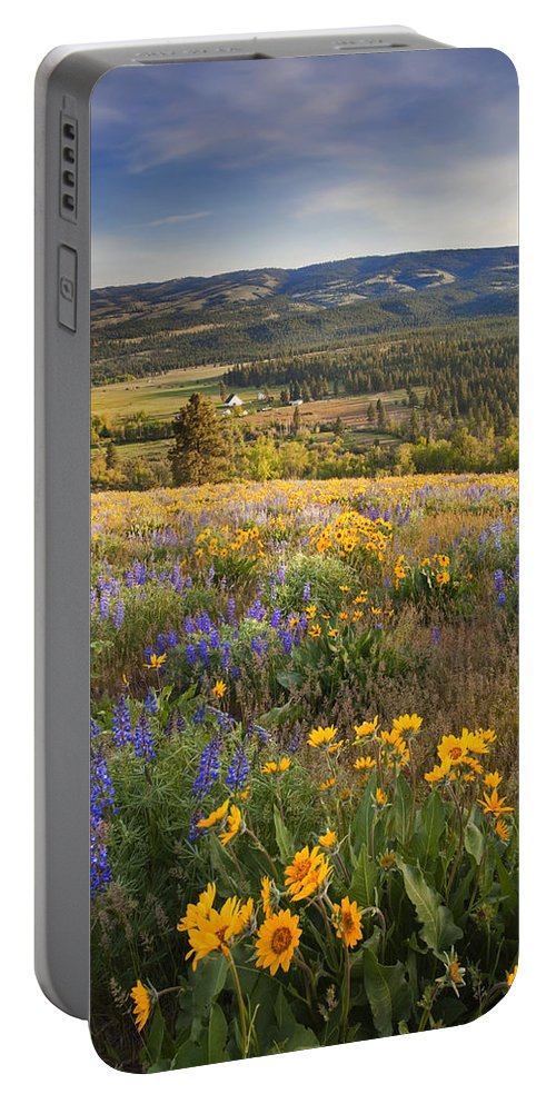 Wildflowers Portable Battery Charger featuring the photograph Golden Valley by Mike Dawson