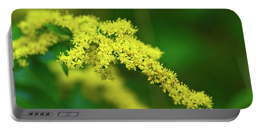 Goldenrod Portable Battery Charger featuring the photograph Goldenrod by Paul Mangold