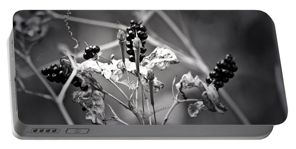 Flower Portable Battery Charger featuring the photograph Gone To Seed Berries And Vines by Teresa Mucha