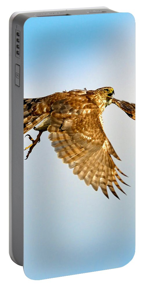 Hawk Portable Battery Charger featuring the photograph Good Hawk Hunting by William Jobes