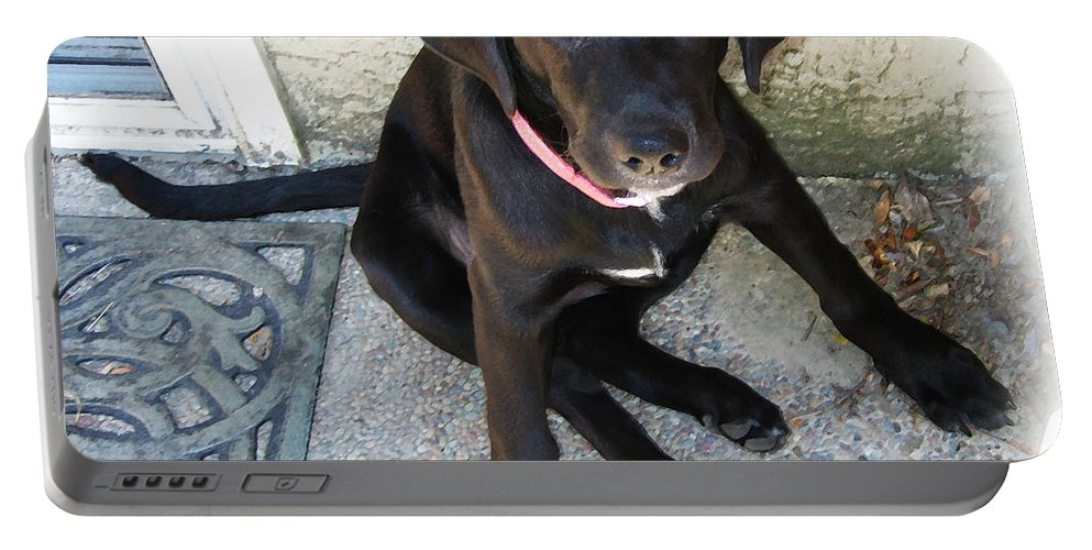 Dog Portable Battery Charger featuring the photograph Good Puppy by Rhonda Chase