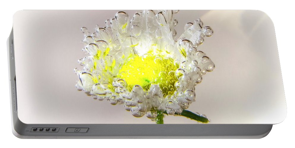Floral Portable Battery Charger featuring the photograph Gossamer by LeAnne Perry